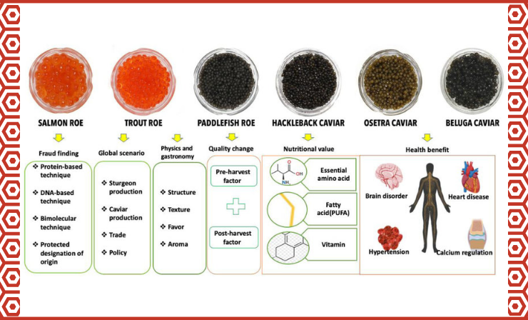 Caviar Is Considered One of the Most Healthy Foods